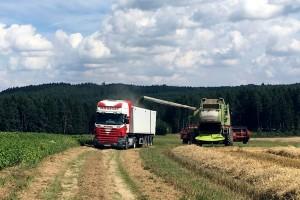 Getreide Beladung am Feld